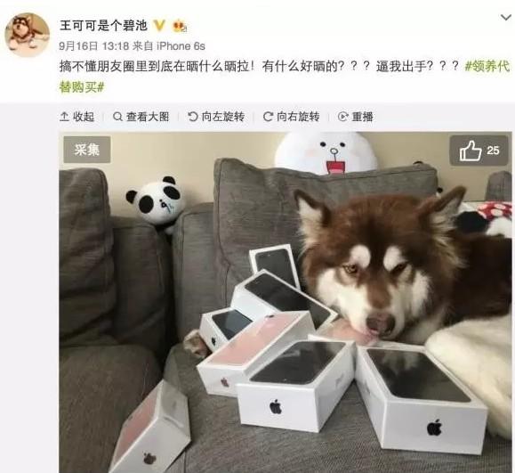 想知道iPhone7洞件值好多钱吗?拥有人方拆卸了壹台
